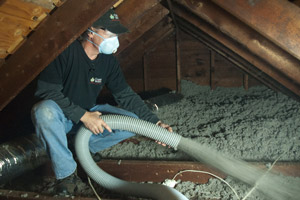Blown Insulation in Troy